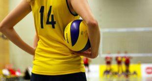 Volleynews volleybal V 14